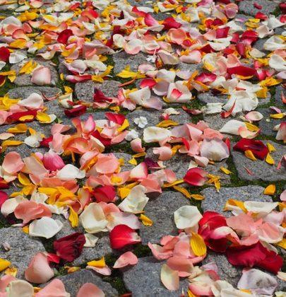 Płatki kwiatów na ślubie.