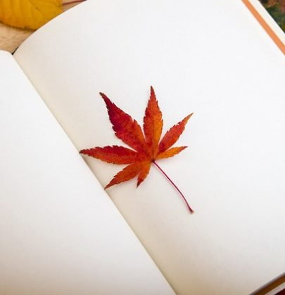 Dedykacje do książki na ślub – przykłady.