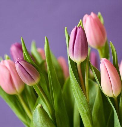 8 marca – odkryj w sobie piękno w Dniu Kobiet.